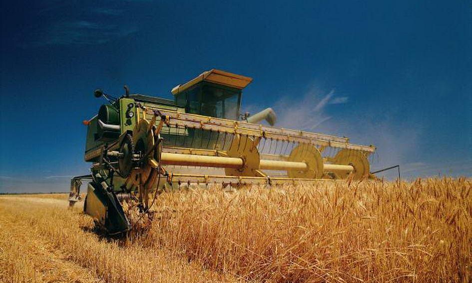 Аграрії намолотили 28,6 млн тонн зерна нового врожаю