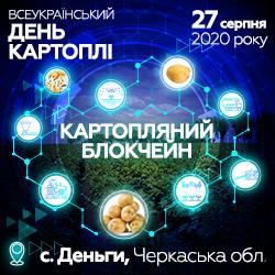 250x250_Block-chaine_Potato