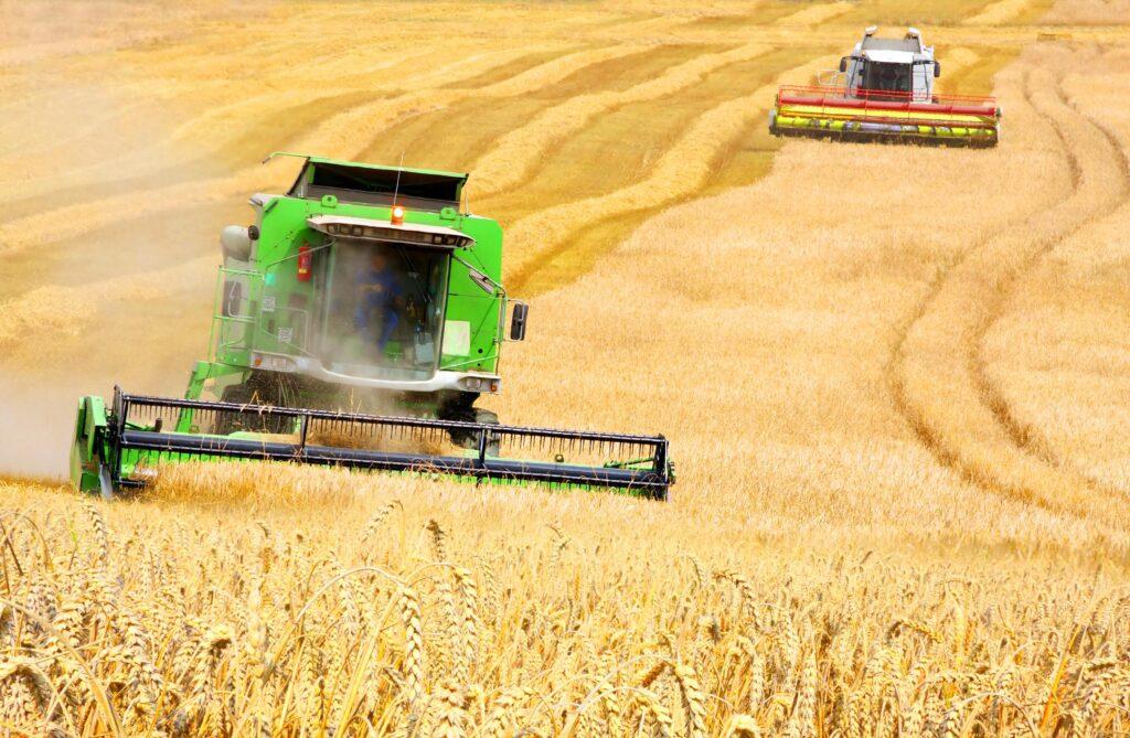 Жнива-2020: В Україні вже зібрано 6,3 млн тонн зерна
