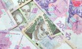 Уряд збільшив фінансову підтримку для малих фермерських господарств