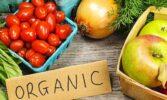 Кабінет Міністрів України планує запровадити новий напрямок державної підтримки агровиробників - органічного виробництва