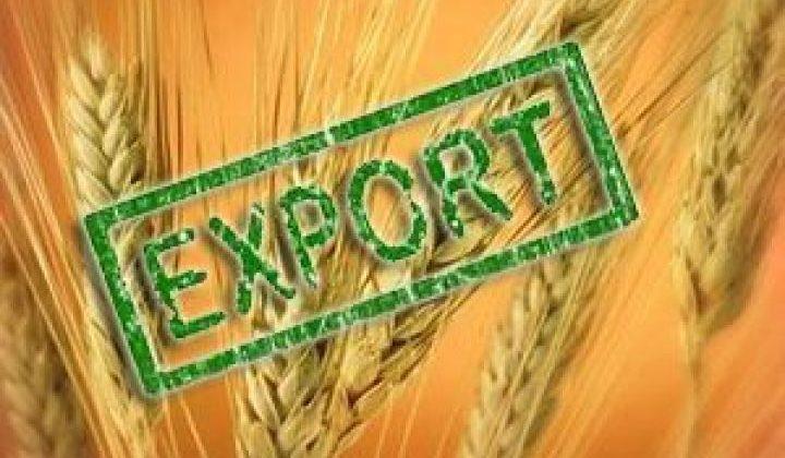 З початку року Україна експортувала 14,4 млн. тонн зернових та олійних культур