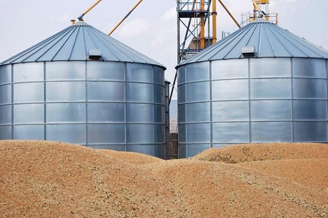 Невизначеність на пшеничних біржах призводить до різких стрибків цін