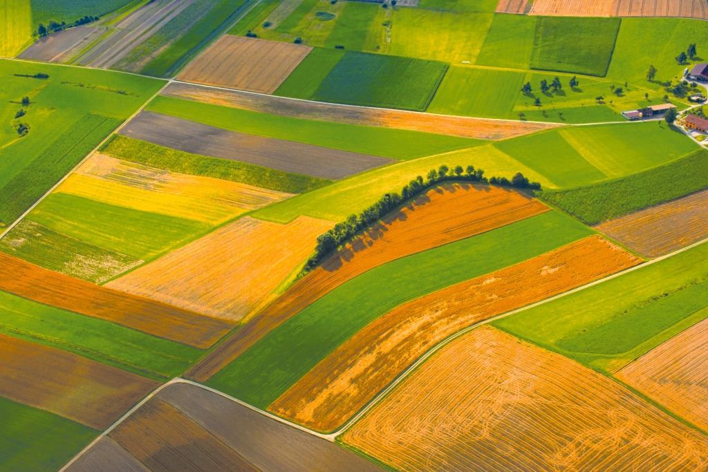 Наступні етапи ринку землі: дерегуляція, децетралізація і консолідація
