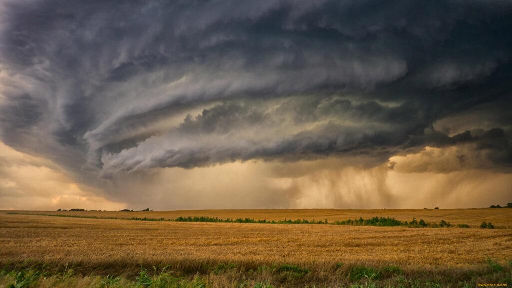 Сильні зливи та град місцями призвели до локального вилягання посівів