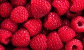 Україна входить в топ-10 світових виробників малини