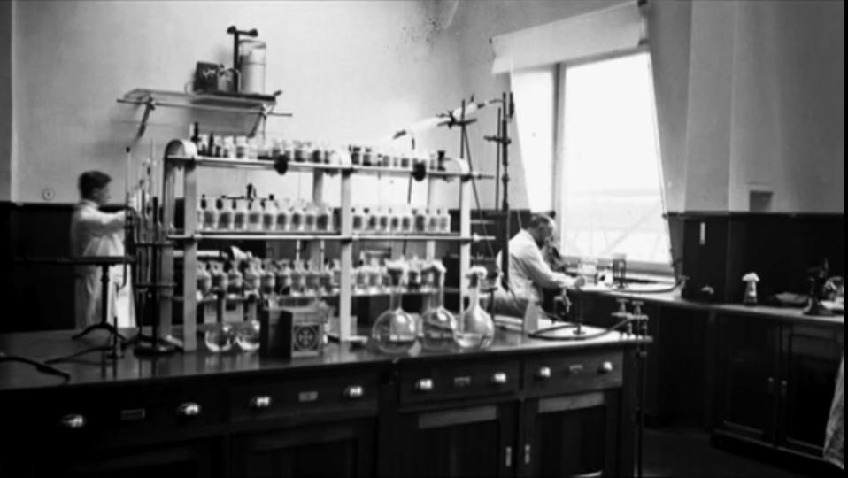 Компанія Bayer: творець інноваційних препаратів, які користуються великим попитом