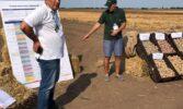 Підсумки Всеукраїнського Дня картоплі «Картопляний блокчейн-2021»